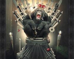 BINET KING OF THRONES